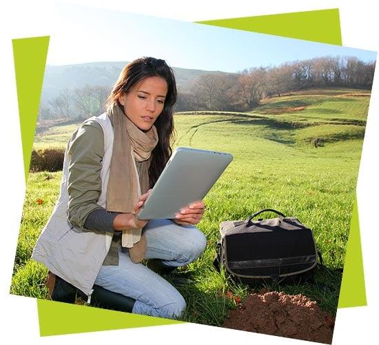 servizi di consulenza e management ambientale